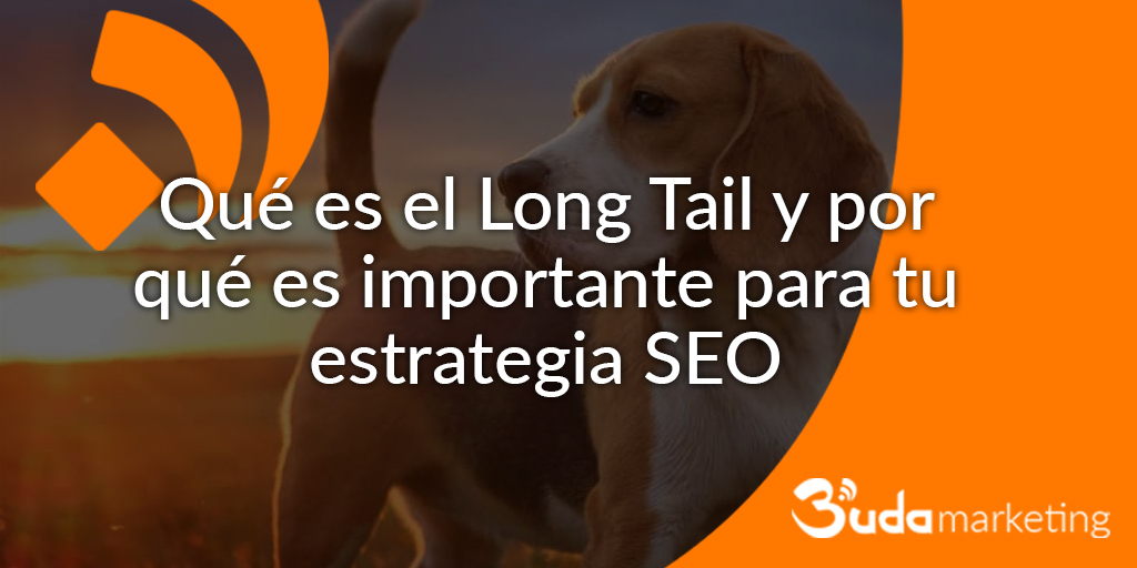 Que es el Long Tail y por qué es importante para tu estrategia SEO